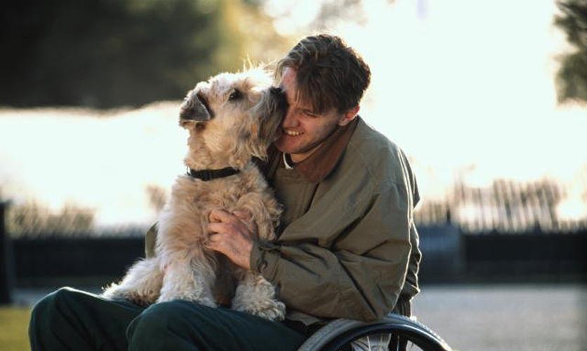 Собаки с Красивые Что значит Мужские Больно