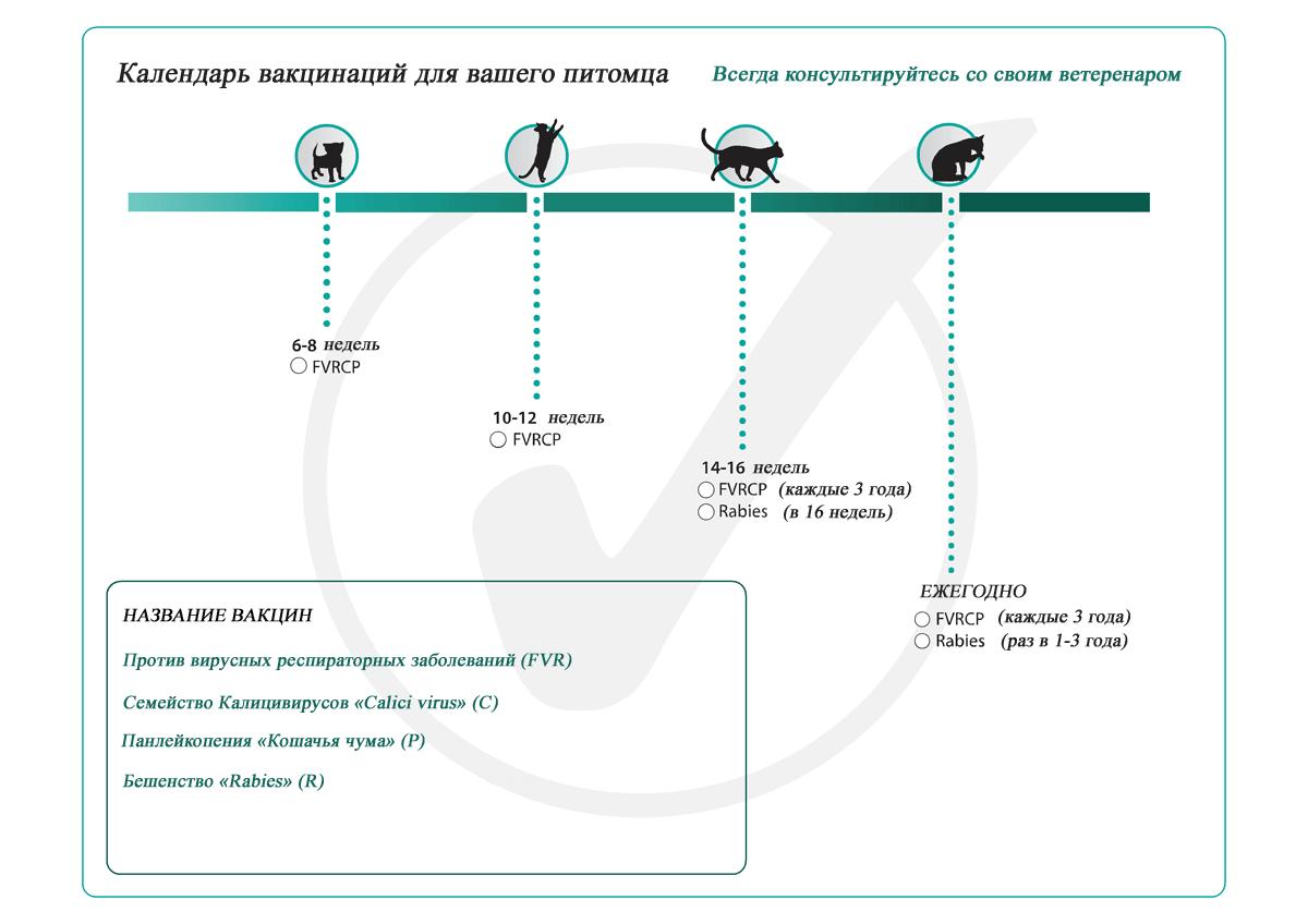 Схема коробки и сцепление передач